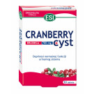 CRANBERRY CYST TABLETE A30