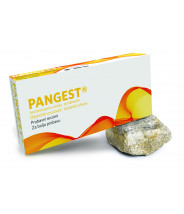 PANGEST TABLETE 200MG A10